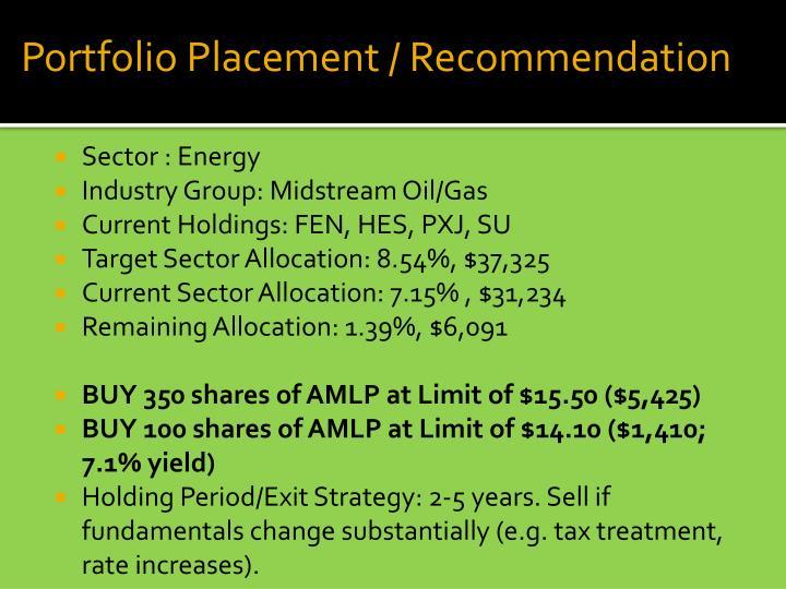 Portfolio Placement / Recommendation