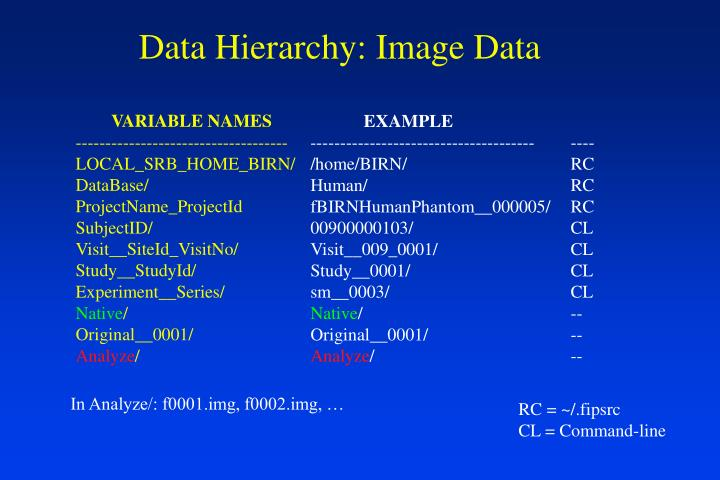 Data Hierarchy: Image Data