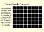 anomalias da percep o