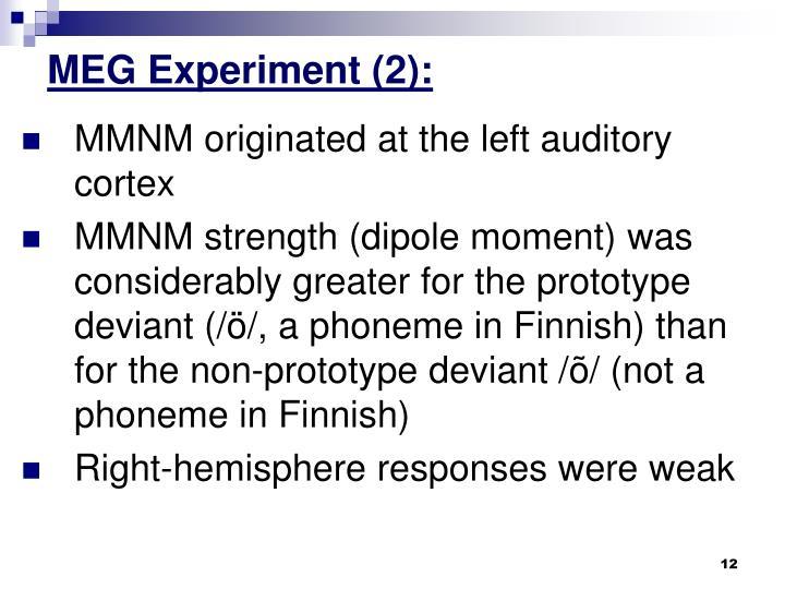 MEG Experiment (2):