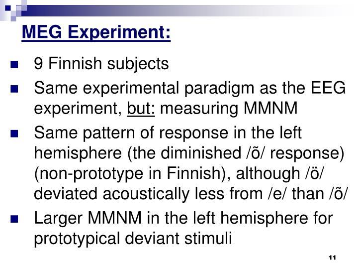 MEG Experiment: