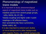 phenomenology of magnetized brane models