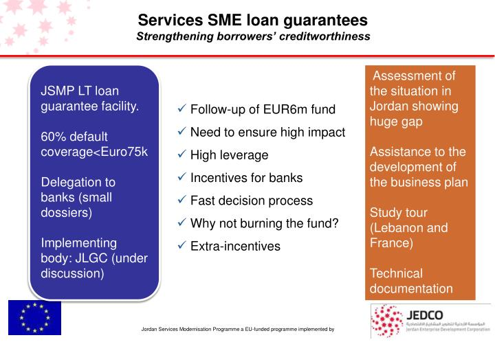 Services SME loan guarantees