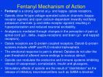 fentanyl mechanism of action