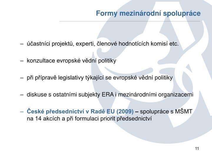 Formy mezinárodní spolupráce