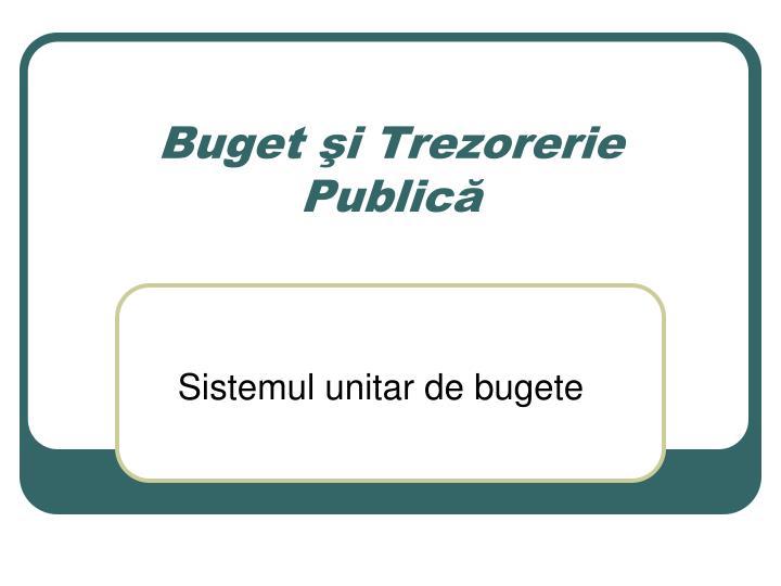 buget i trezorerie public