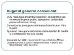 bugetul general consolidat