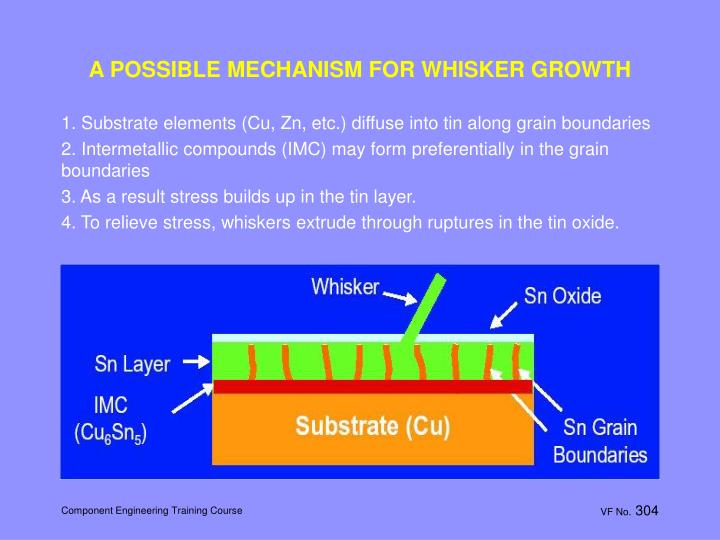 A POSSIBLE MECHANISM FOR WHISKER GROWTH
