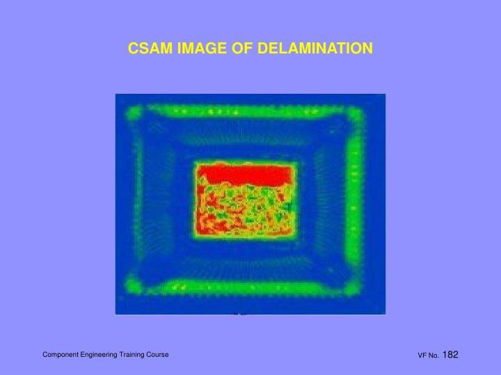 CSAM IMAGE OF DELAMINATION