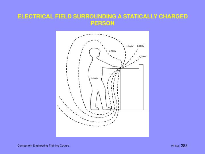 ELECTRICAL FIELD SURROUNDING A STATICALLY CHARGED PERSON