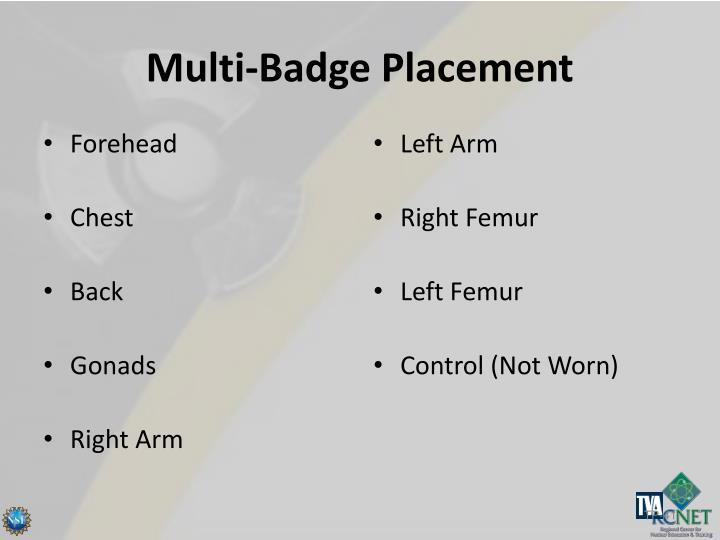 Multi-Badge Placement