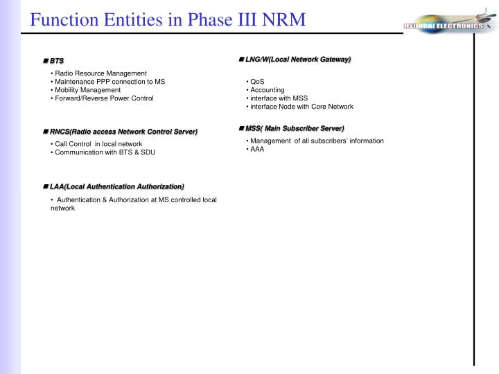 Function Entities in Phase III NRM