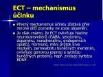 ect mechanismus inku
