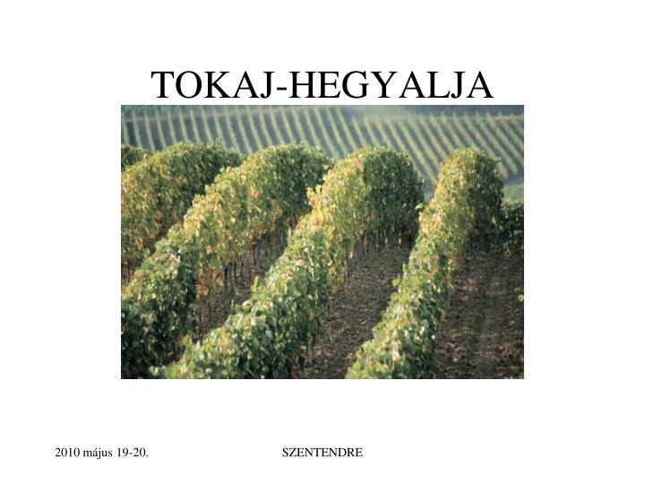 TOKAJ-HEGYALJA