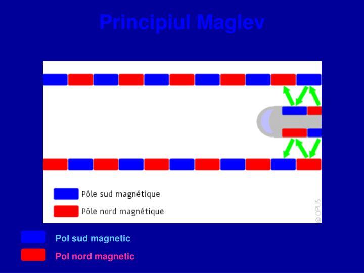 Principiul Maglev