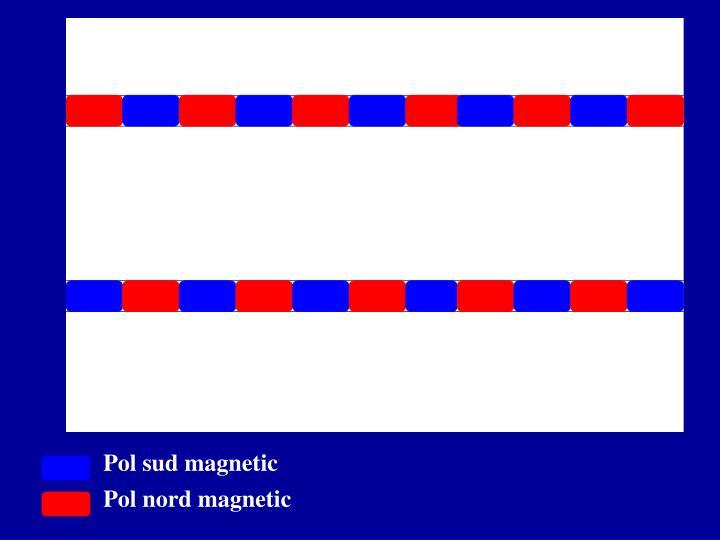 Pol sud magnetic