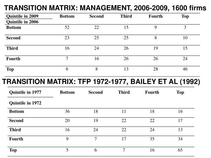 TRANSITION MATRIX: MANAGEMENT, 2006-2009, 1600 firms