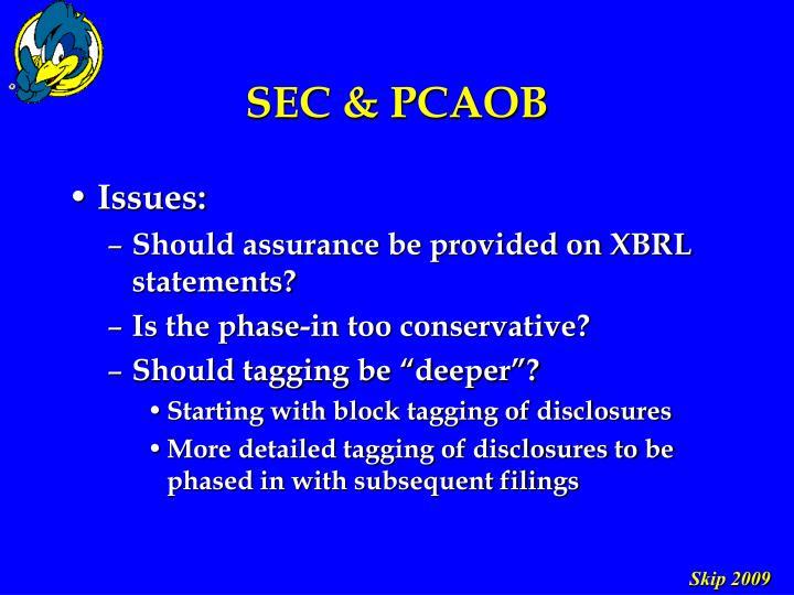 SEC & PCAOB