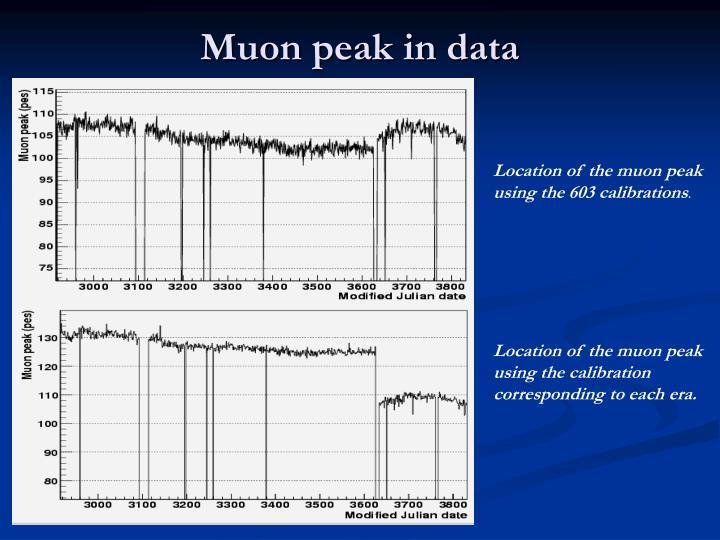 Muon peak in data