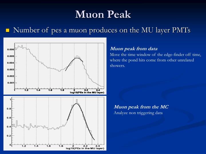 Muon Peak