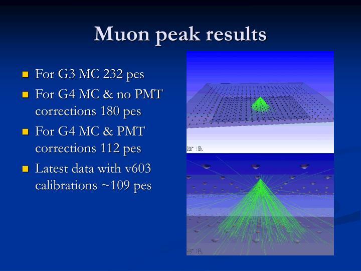 Muon peak results