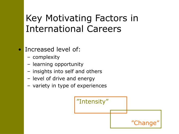 Key Motivating Factors in International Careers