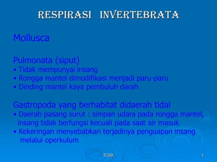 respirasi invertebrata n.