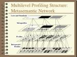multilevel profiling structure metasemantic network
