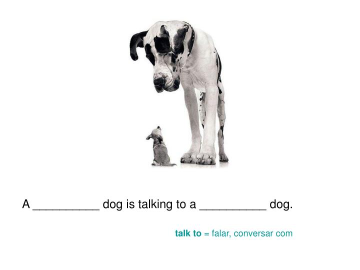 A __________ dog is talking to a __________ dog.