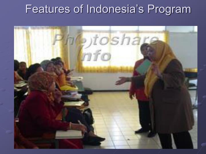 Features of Indonesia's Program
