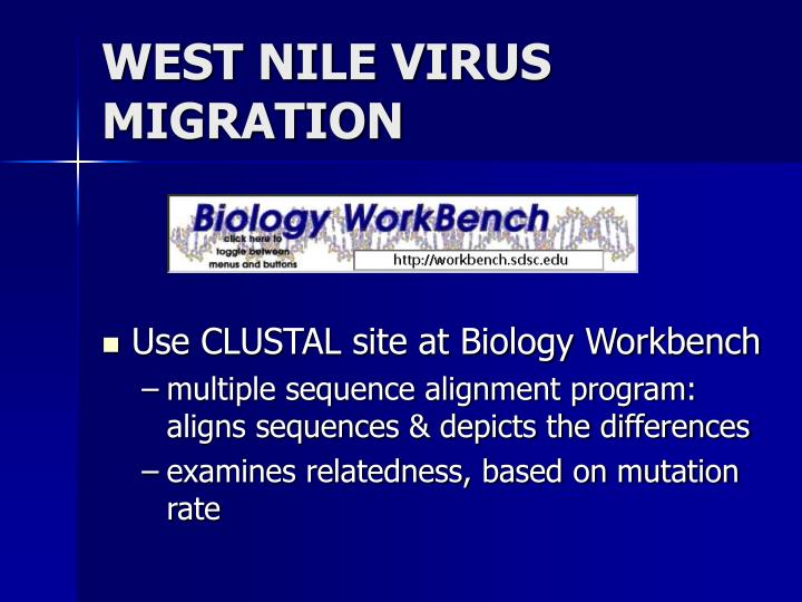 WEST NILE VIRUS  MIGRATION