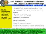 coa 1 phase iii sustenance of operations and mitigation of other hostile groups1