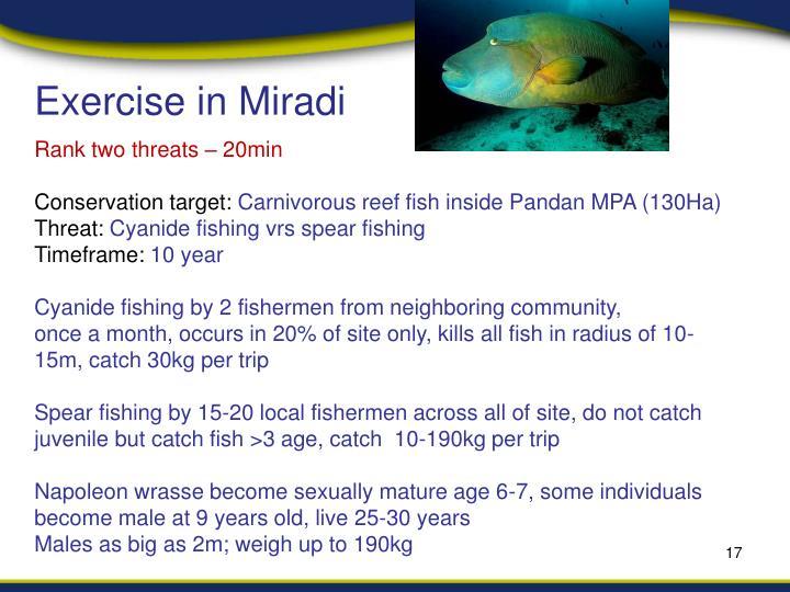 Exercise in Miradi