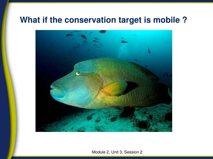 What if the conservation target is mobile ?