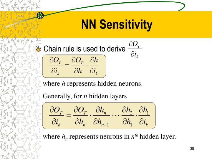 NN Sensitivity