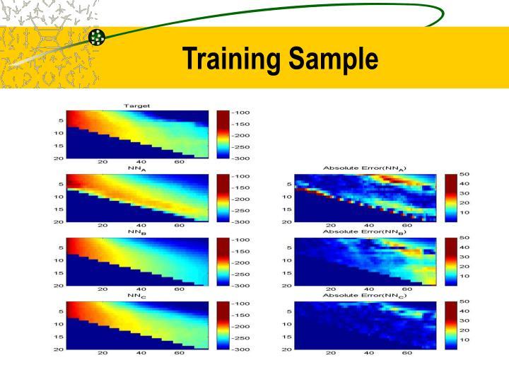 Training Sample
