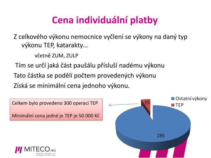 Cena individuální platby