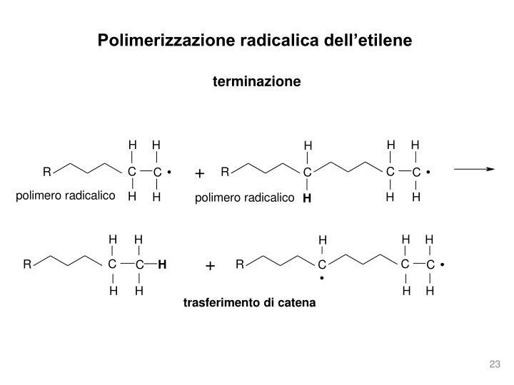 Polimerizzazione radicalica dell'etilene