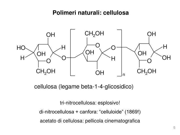 Polimeri naturali: cellulosa