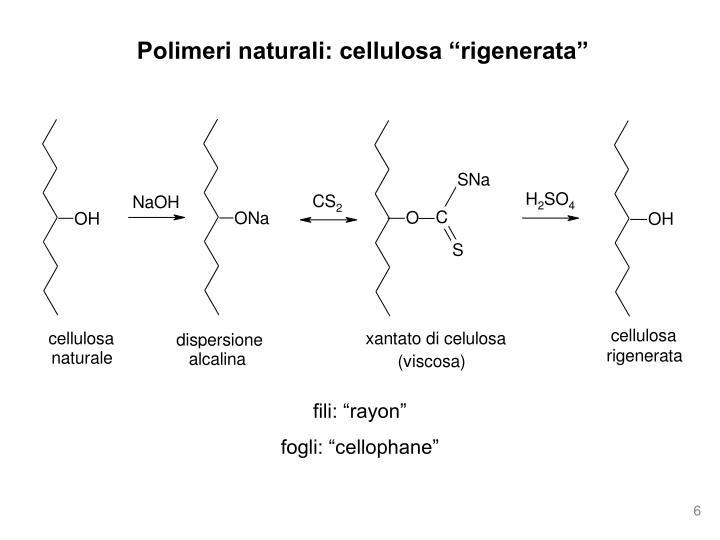 """Polimeri naturali: cellulosa """"rigenerata"""""""