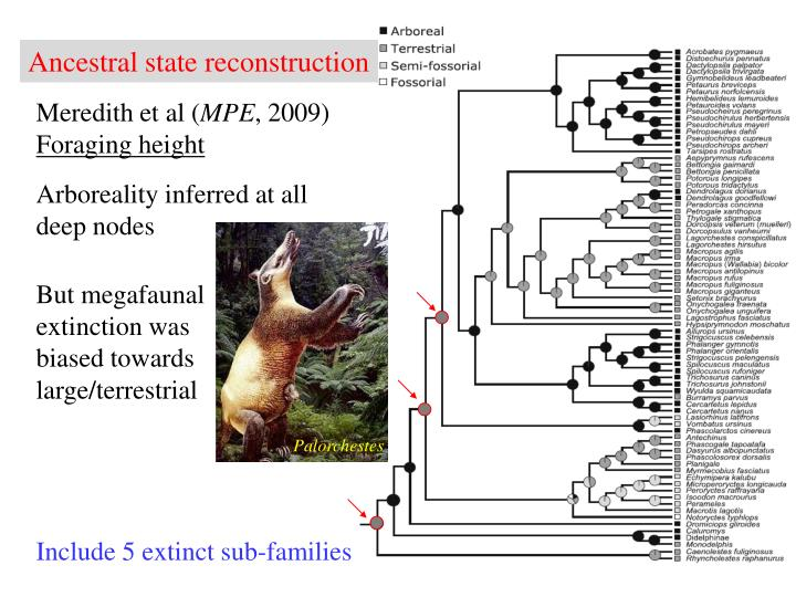 Ancestral state reconstruction
