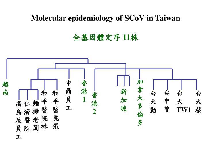 Molecular epidemiology of SCoV in Taiwan