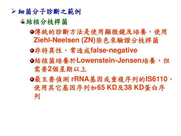 細菌分子診斷之範例