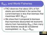 b mey and world fisheries