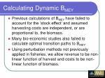 calculating dynamic b mey