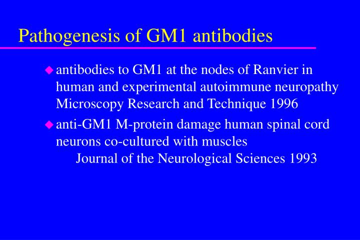 Pathogenesis of GM1 antibodies