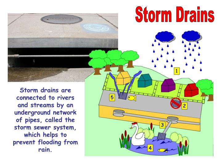 Storm Drains