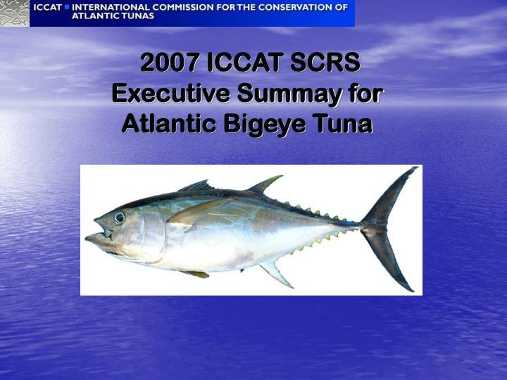 2007 iccat scrs executive summay for atlantic bigeye tuna