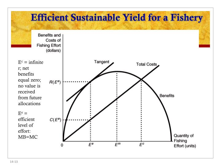 Efficient Sustainable Yield for a Fishery