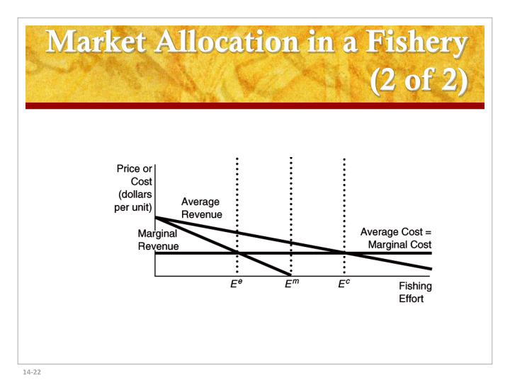 Market Allocation in a Fishery (2 of 2)